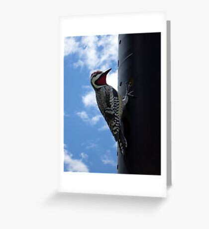 Metal Woodpecker in Toronto Greeting Card