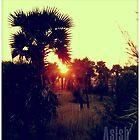 nature by artsyashi