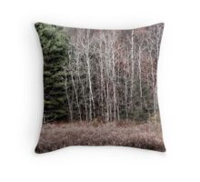 Bare Birch Trees Throw Pillow