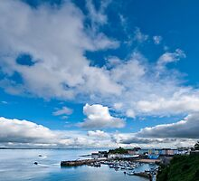 Tenby Harbour Pembrokeshire 4 by Steve Purnell