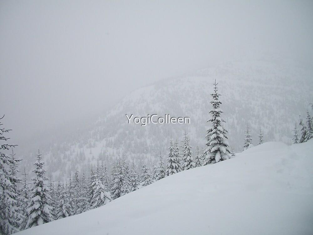 Winter Wonderland by YogiColleen