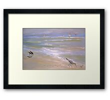 Wind Surfer Framed Print