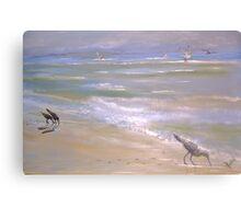 Wind Surfer Canvas Print
