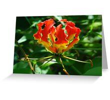 Flaming Flower Greeting Card