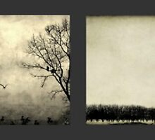 Dream Trees by Annie Lemay  Photography