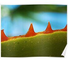 monster plant Poster