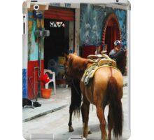 Yelapa, Mexico street scene iPad Case/Skin