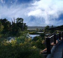 Riverwalk by Carol Rudd