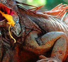 Iguana eating a mango Sticker