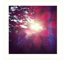 sunflare Art Print