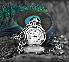 Time is the wisest counsellor by HennaGoddess