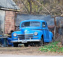 Back Road Blues by deb cole