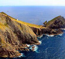 BAY OF ISLAND.NORTH ISLAND. NEW ZEALAND by Martin  Brinsley