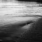 Harkers Island Beach-1 by Juanita Salter