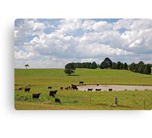 Moo Pool Canvas Print
