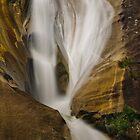 Upper Eurobin Falls 1 by Werner Padarin