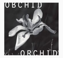 Orchid In Drops Baby Tee