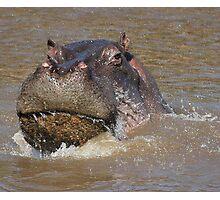 Splish, Splash, I was Taking a Bath Photographic Print