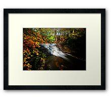 Bersham Falls - River Clywedog Framed Print
