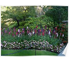 Colorful border in the Sunken Garden - Butchart Poster