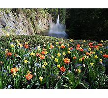Sunken Garden Fountain - Butchart Photographic Print