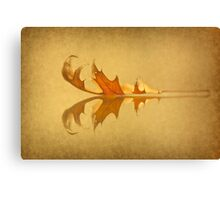Beneath The Falling Leaves Canvas Print