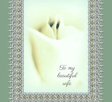 Wife Birthday Greeting Card - Rosebud and Lace by MotherNature