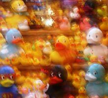 A Ducky World: photo calendar by Sammy Nuttall