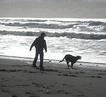 """"""" Beach Walk """" by waddleudo"""