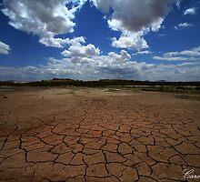 Cracked Earth by Carol Rudd