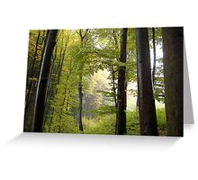 Autumn in Vienna forest Greeting Card