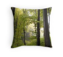 Autumn in Vienna forest Throw Pillow