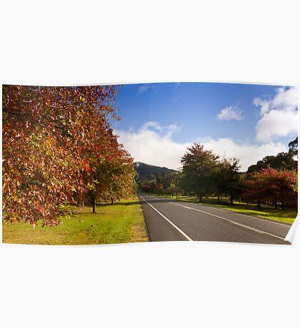 Mt Macedon Autumn Poster
