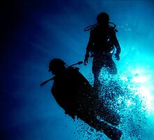 Scuba Diving in the Red Sea by nikkihinton