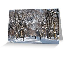 Winter Mall Central Park Greeting Card