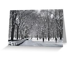 Central Park Mall Winter Scene Greeting Card