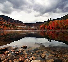 Peak Color - Basin Pond by T.J. Martin