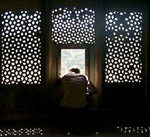 Window to the World by Valerie Rosen