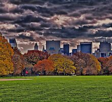 USA. New York. Central Park. by vadim19