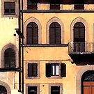 Buildings, Florence. by Malcolm Clark