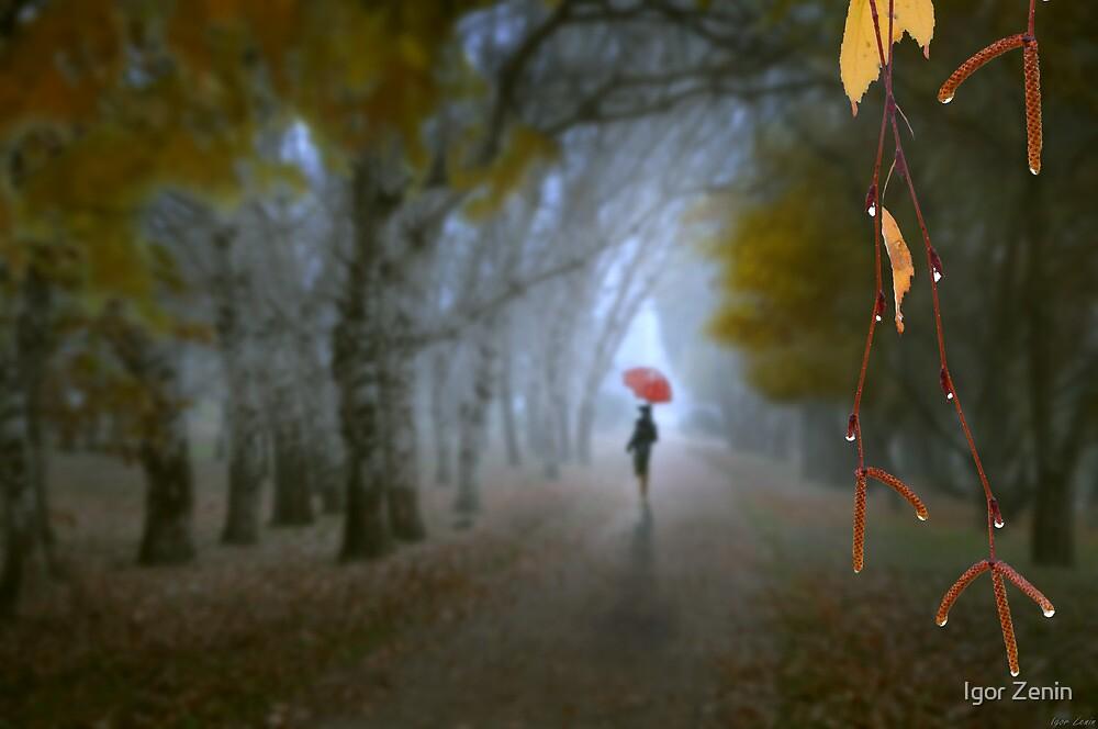 A Day In November by Igor Zenin