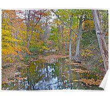 Deep Creek in Autumn - Green Lane PA Poster