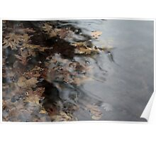Inky Leaves Poster