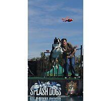 Stetson Splash Dog! Photographic Print