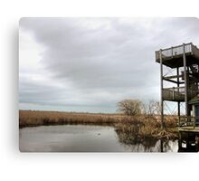 Winter Marshy Lookout Canvas Print