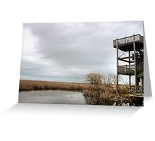 Winter Marshy Lookout Greeting Card