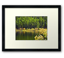 Salmon Lake Reflections Framed Print