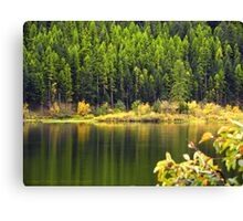 Salmon Lake Reflections Canvas Print
