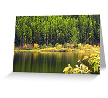Salmon Lake Reflections Greeting Card