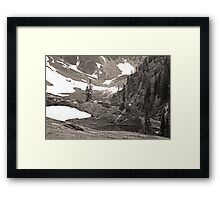 trail in heather meadows, wa, usa (sepia) Framed Print